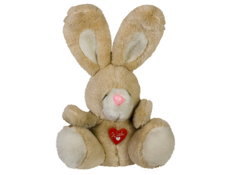 Close-up of a stuffed bunny toy