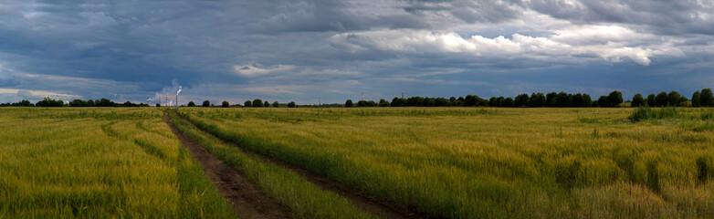 panorama of rural field