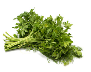 Garden Poster Plant parsley and dill on a white background. macro