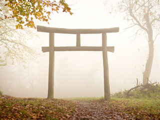 Fototapete - japanisches Torii