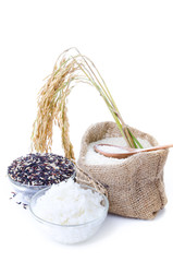 Raw rice, Selection Of black rice white rice and white steamed r