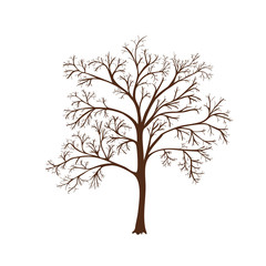 icon silhouette of a tree with no leaves