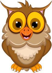 funny owl cartoon posing