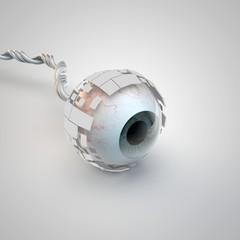Sehorgan Auge