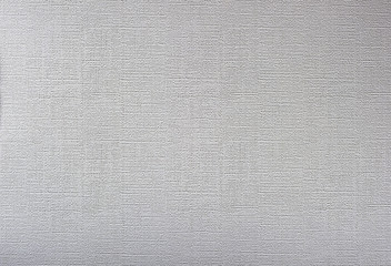White background with fine texture