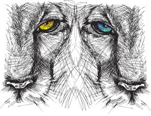 Papiers peints Croquis dessinés à la main des animaux Hand drawn Sketch of a lion looking intently at the camera