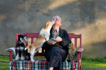 Senior man with dogs and cat on his lap on bench