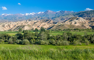 Fototapete - Tien Shan mountains and valley