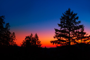 Papiers peints Parc Naturel Sunset in Yosemite National Park with tree silhouettes