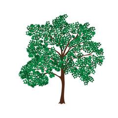 icon tree with lush green foliage