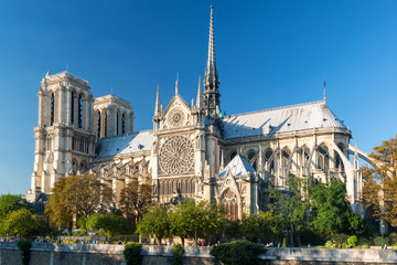 Wall Mural - The Cathedral of Notre Dame de Paris