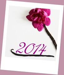 2014 floral,orchidée mauve ,polaroid