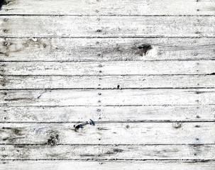 Wall Mural - white wooden texture