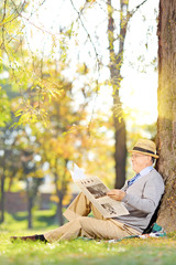 Senior gentleman reading a newspaper on a sunny day in a park
