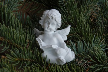 Weihnachtsengel im Tannengrün
