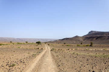 People walking on dirt road in stone desert  (Hamada du Draa, Mo