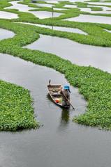 Farmer at Boeung Kak lake, Phnom Penh (Cambodia)