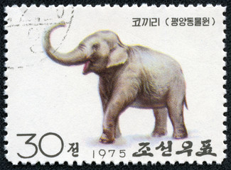 stamp printed in North Korea shows elephant