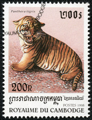 stamp printed in Cambodia shows tiger cub