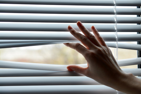 Female hand separating slats of venetian blinds with a finger