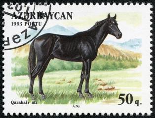 stamp printed in Azerbaijan shows a black horse