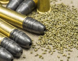 .22 caliber Long rifle  with smokeless powder on canwas
