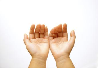 子供の手の平