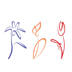 outlined hand drawn flower collection