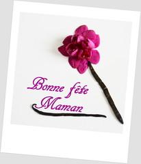 orchidée rose, bonne fête maman,polaroid