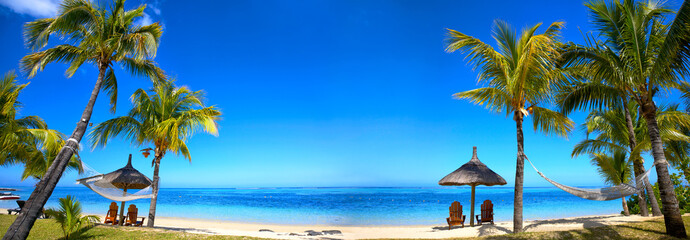 Tropical beach panorama with chairs and umbrellas