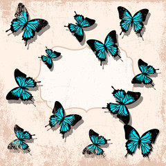 vintage butterfly backgrounnd