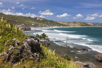Barbados Shoreline