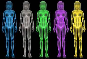 Female coloured bodies