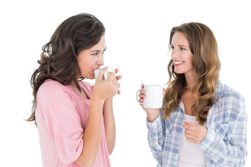Female friends chatting while drinking coffee