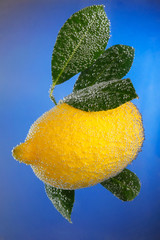 Lemon covered with bubbles on blue background