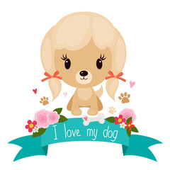 Cute little dog on a floral banner over white background