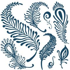 decorative feathers set