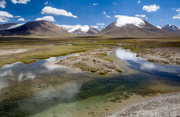 Fototapete - Pure river in Arabel valley. Tien Shan, Kirghizia