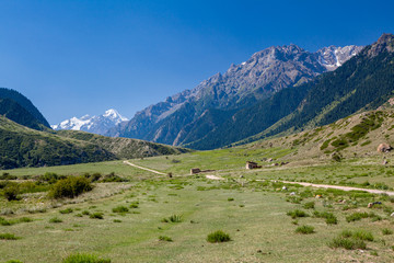 Fototapete - Rural landscape in Tien Shan mountains