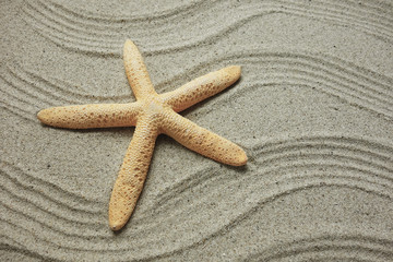 starfish and shells with frame on the beach, vacation memories