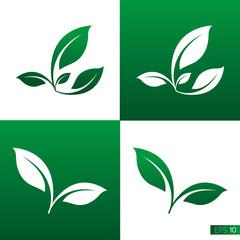 Leaf Icon Vector Illustrations
