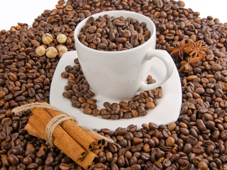 coffee beans with spice  and cup