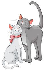 verliebte Schmusekatzen