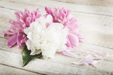 Postcard with elegant  flowers peony
