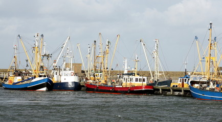 Fishing boats laying in the harbour of Lauwersoog.