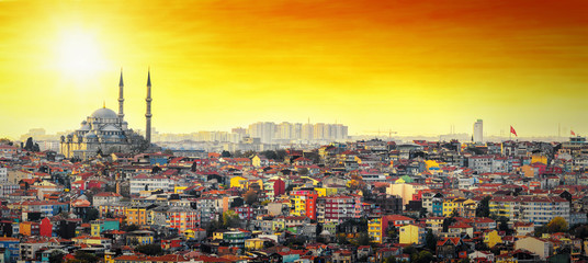 Aluminium Prints Turkey Istanbul Mosque with colorful residential area in sunset