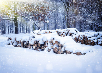Winter landscape with firewoods covered snow