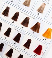 Locks of hair dyed in various shade