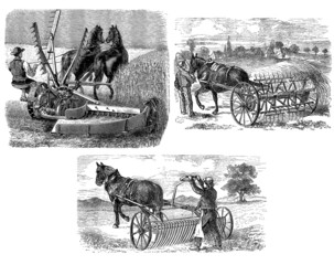 Peasants : Agricultural Machines - 19th century