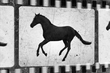 Running horse, old film